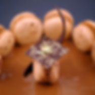 Macarons Pépin