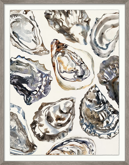 Oyster Collection