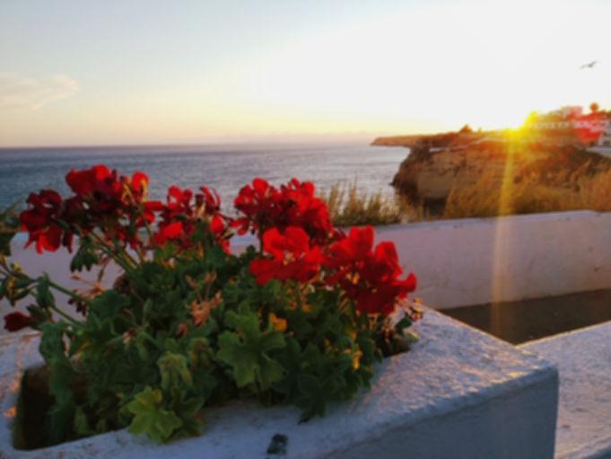Private tour Algarve