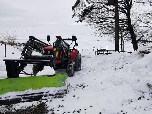 254 Snow (2).jpg