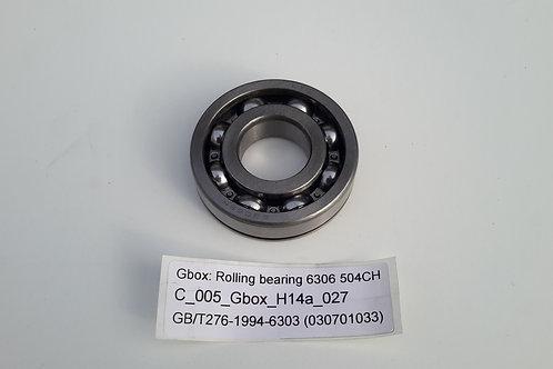 Rolling bearing 6306