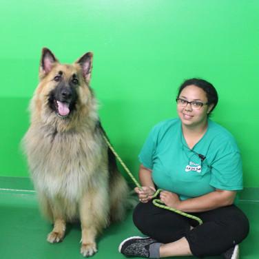 Asia - Dog Handler