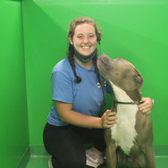 Katy - Dog Handler