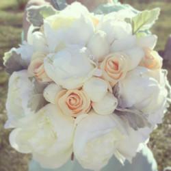 Peonies, Peach Roses + Dusty Miller