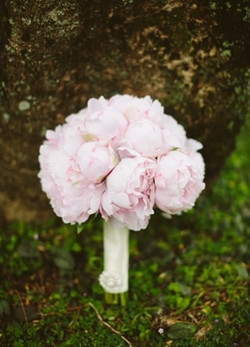 Japanese Peony Bouquet