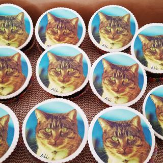 cupcakes wisca.jpg