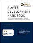 Player Dev Handbook Cover.JPG