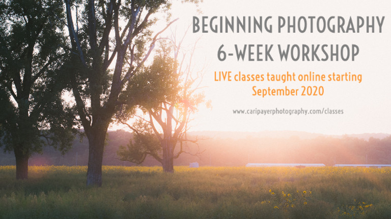 Beginning Photography 6-week Workshop