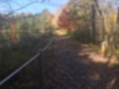 Trail of the Senses .JPG