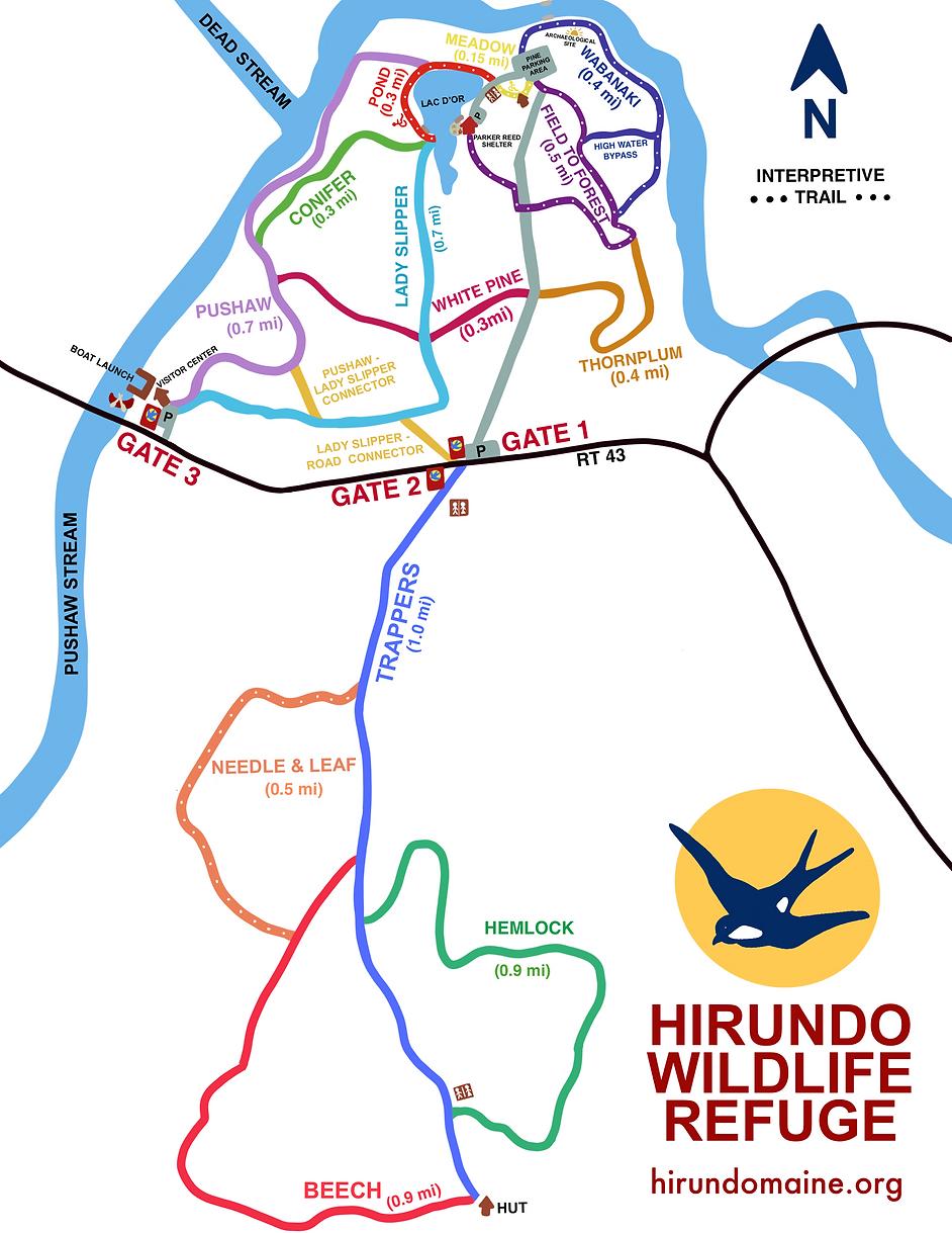 Hirundo Map 3.0 _2021 update.png