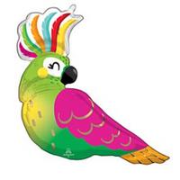 40_ tropical parrot