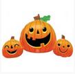30_ Pumpkin set
