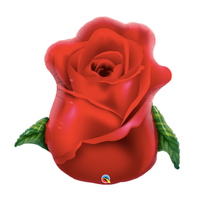 "30"" Red Rose"