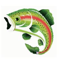"28"" Rainbow Trout"
