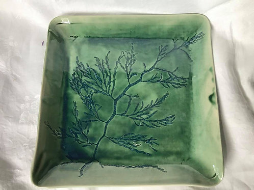 Seaweed Platter Large Green