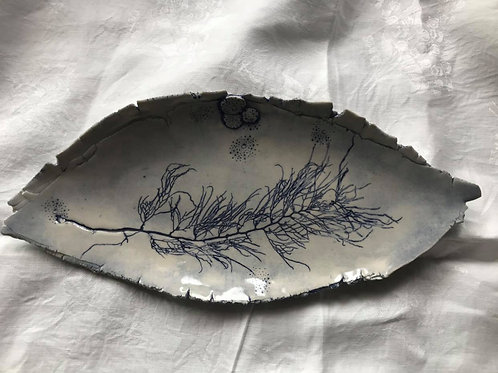 Seaweed Platter Rough Edge Blue Oval