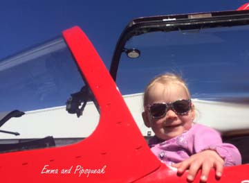 Ready to Fly Pipsqueak.jpg