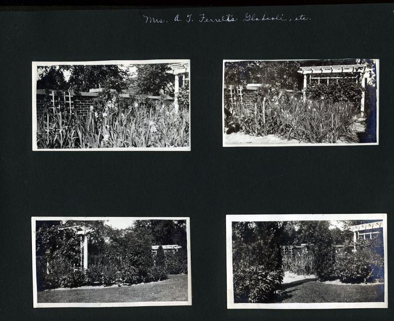 Mrs. A.T. Ferrell's garden