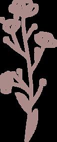 bloem3-paars.png