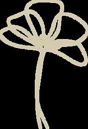 bloem3-goud_edited.png