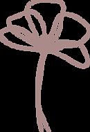 bloem4-paars.png