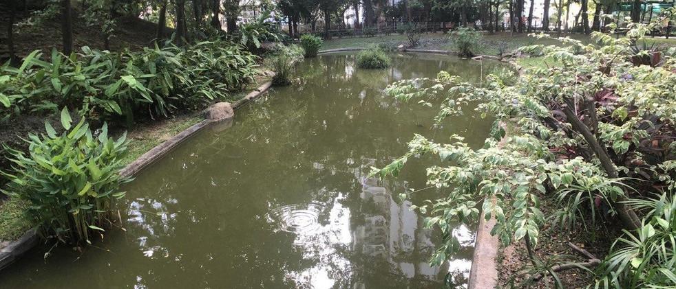 青衣公園3