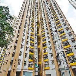 青泰苑 Ching Tat Court
