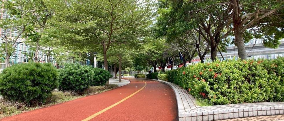 青衣海濱公園緩跑徑2