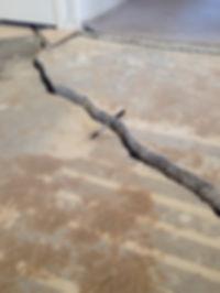 Crack in cement slab.jpg