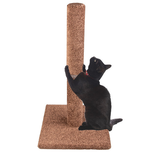 74 cm Tall Cat Scratching Post with Full Carpet Covered