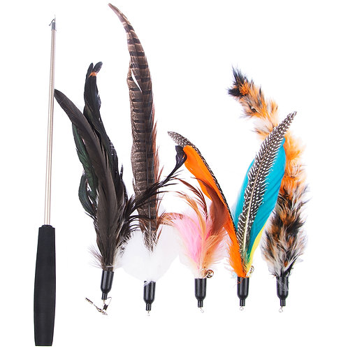 Cat 1 Wand and 5 Refill Teaser Feather Ringing Toys Set