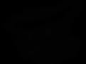 лого papagrill (черный)_Монтажная област