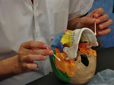 Манипуляции на черепных нервах.