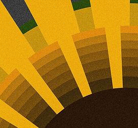 11_01_flower-compressor.jpg