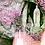 Thumbnail: Illustration Grotte Vierge Lourdes