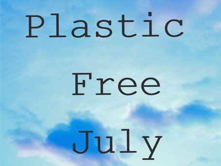 What changes are you making towards a Plastic Free World?