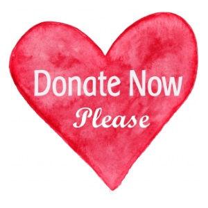 donate-now-please.jpg