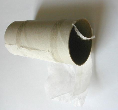Y a-t-il des théories qui expliquent la ruée vers le papier hygiénique?