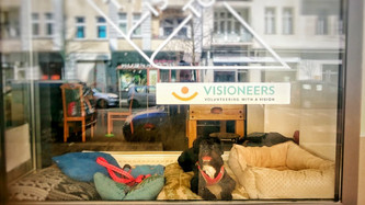 Happy: The Dog in the VISIONEERS Window