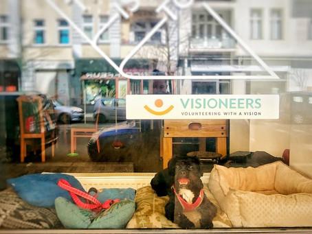 Happy, der Schaufensterhund von VISIONEERS