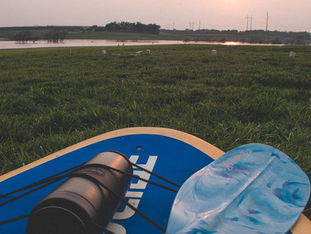 5 Reasons To Love Paddleboards