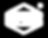 FLPSDE White Logo (R).png