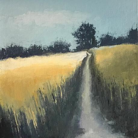 Wheatfield Footpath