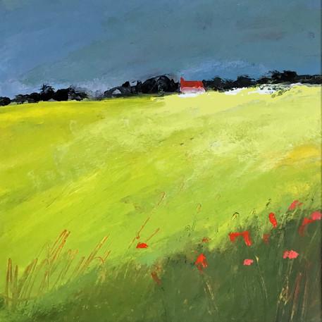 Yellow Green Field