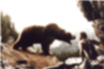 L-ours-41.jpg