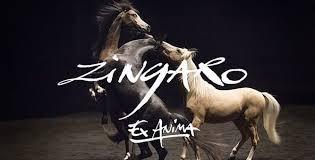EX-ANIMA de Zingaro: une œuvre controversée...