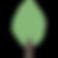 Basic Park Tree 900w.png