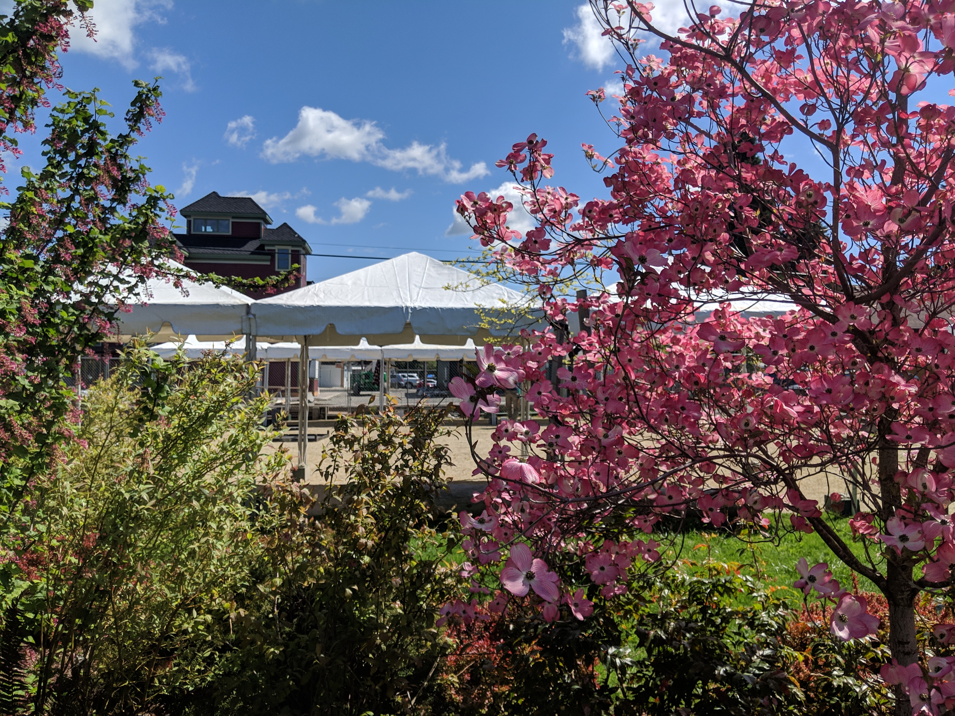 Spring and event tents