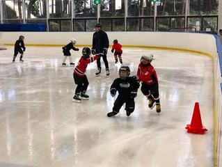 Hockey School Changes