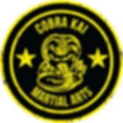 yellow-circle-martial-arts-logo.png